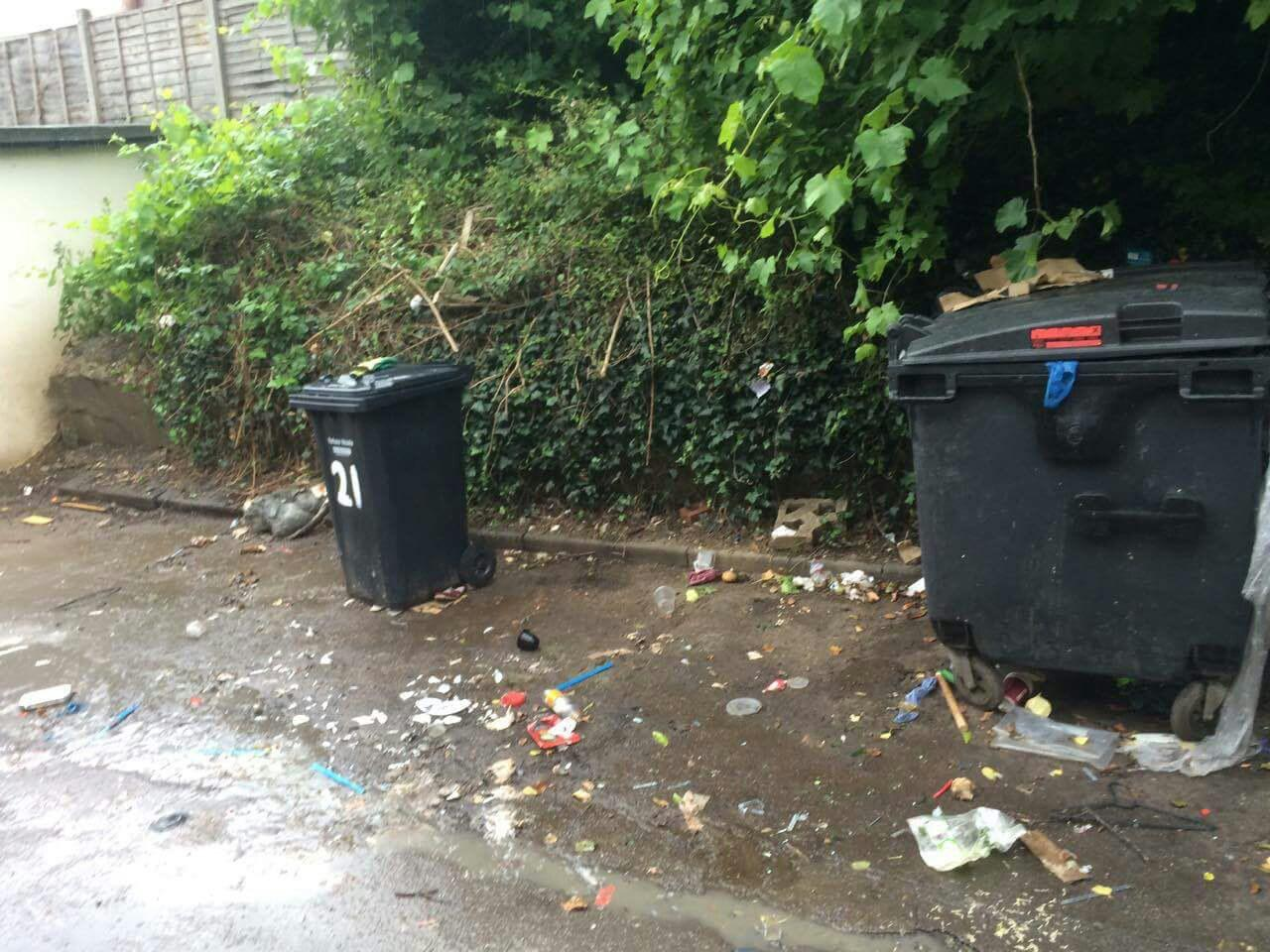 Upper Norwood clearing waste collection SE19